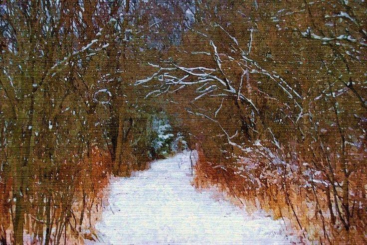 Digital Art/Desktop Wallpaper/A Winter's Walk