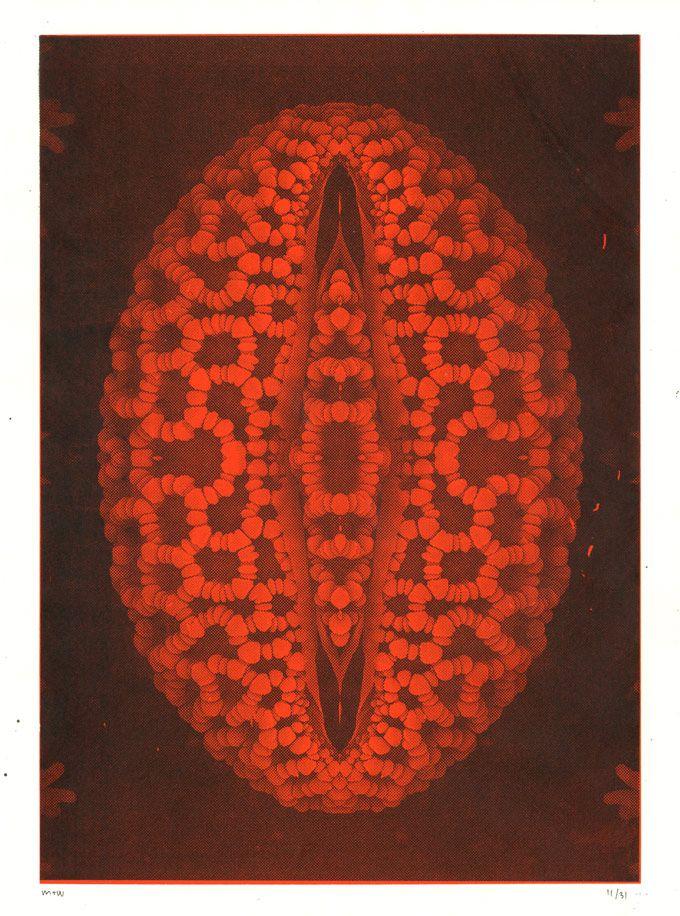 """Pollen"" silkscreen poster, Janus Houe Magnussen & Jalte Windum (www.jaltewindum.com)."