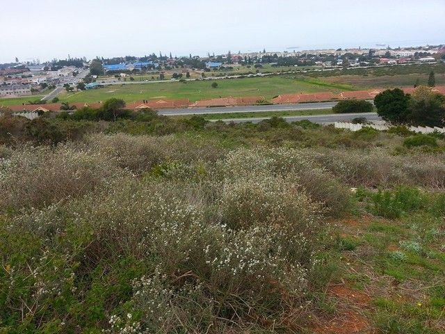 1,496m� Vacant Land For Sale in Mossel Bay   TMD Properties - Property South