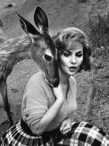 動物好きなジーナ・ロロブリジーダがキュート❤︎❤︎
