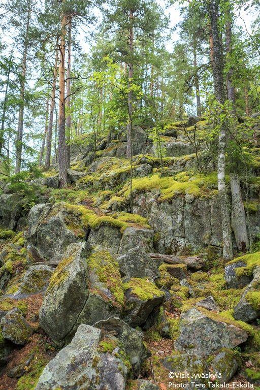 Oravivuori. ©Visit Jyväskylä Photo: Tero Takalo-Eskola.