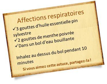 affections respiratoires avec he pin sylvestre