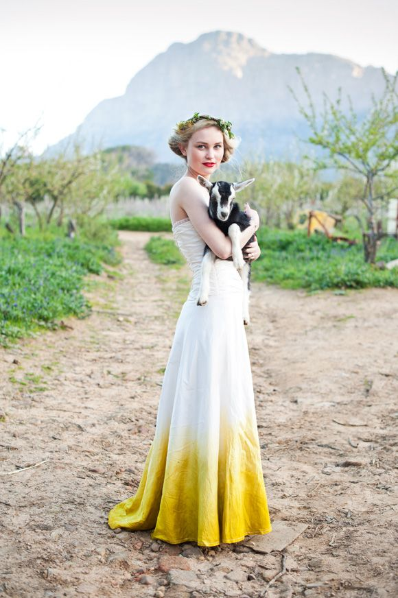 Yellow dipped wedding dress. And a goat. A GOAT. I am so taking a shot like this at my wedding.