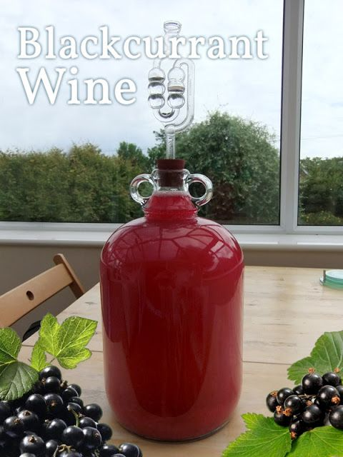 Make your own delicious fruit wine using in-season Blackcurrants ~ this recipe makes six bottles of wine and costs as little as $1 per bottle to make.