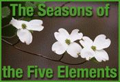In Depth Healing Strategies for Chronic Yeast Infections «  Five Element Healing