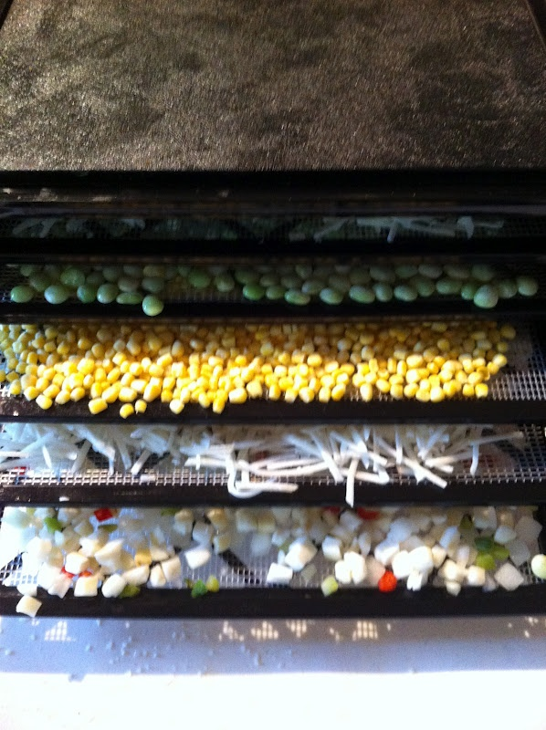 Frozen vegetables are great for dehydrating because they have already been cleaned, cut and blanched.