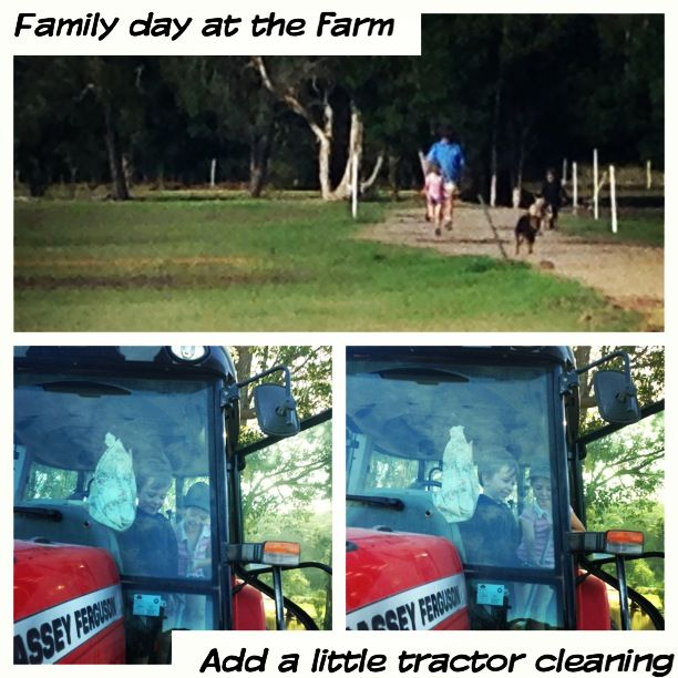 Family Turf Farming