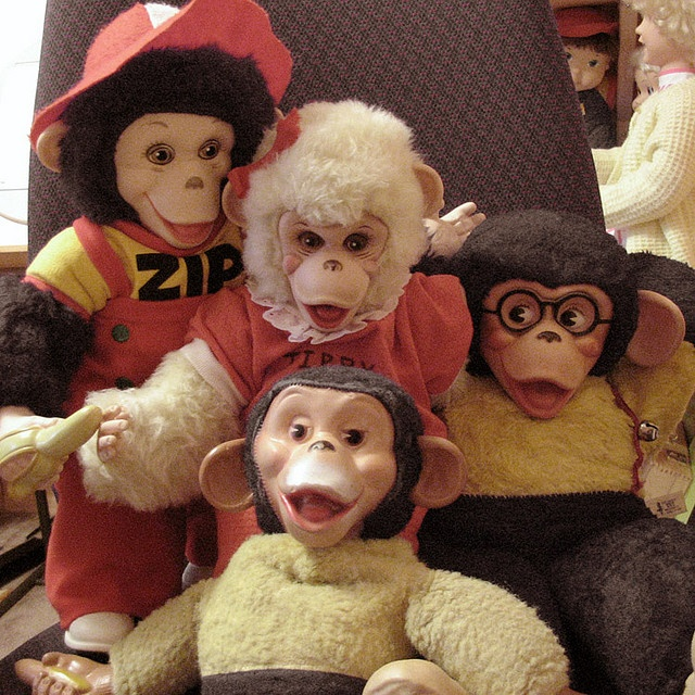 Zip the Monkey ~ I had 2 of these Monky's, lol.
