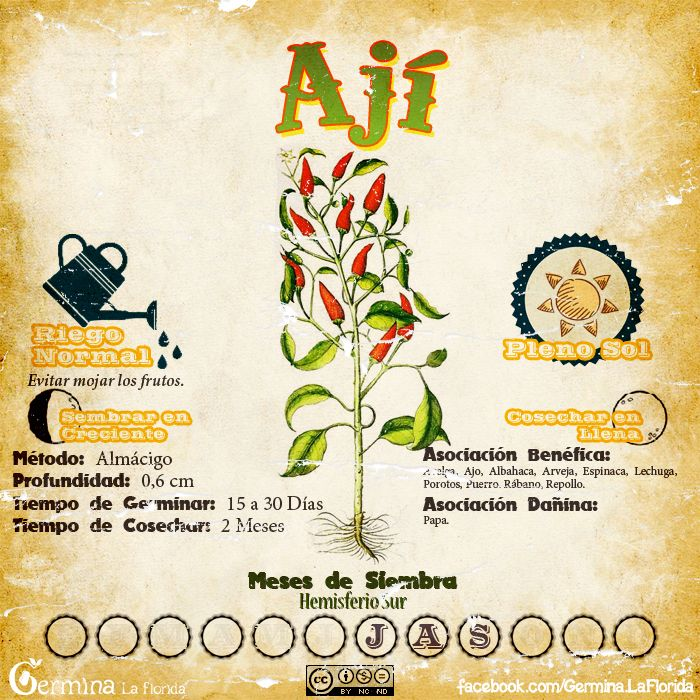 Les traemos este útil calendario de las Siembras del mes de Julio, además de fichas con información específica de cada planta que podr...