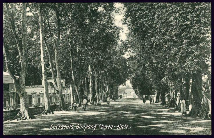 Simpang (boven-einde), Soerabaja.