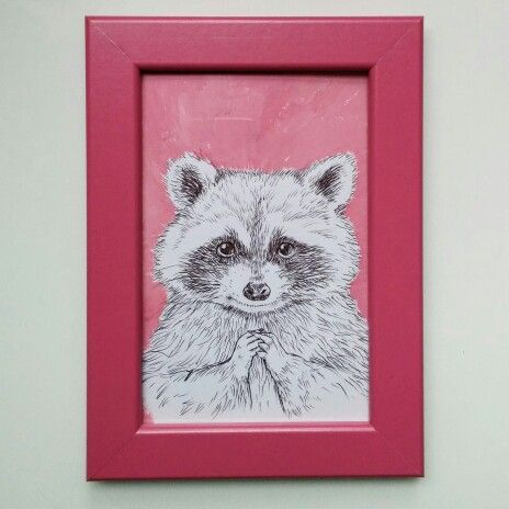 R for Raccoon
