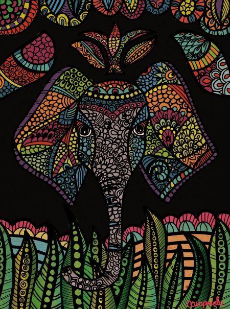 Elefante                                                                                                                                                                                 More
