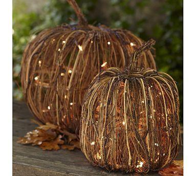 Pumpkins, Lights and Pottery barn on Pinterest