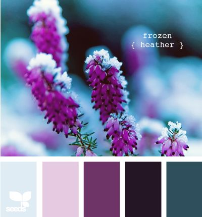 These would be the colors I would look at for a uniform wedding with purple