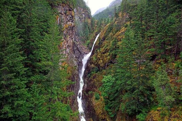 Le parc national de North CascadesLa majeure partie des parcs nationaux américains (29 sur 59) se trouve dans l'ouest du pays. Etranges cactus de Saguaro, glaciers de North Cascades, récif corallien de Capitol Reef… Une exceptionnelle diversité de paysages est à découvrir dans ces immenses sanctuaires naturels.A l'image, le parc national de North Cascades : lynx, castors et wapitis sont les gardiens de ces «Alpes américaines» qui comptent 500 lacs.