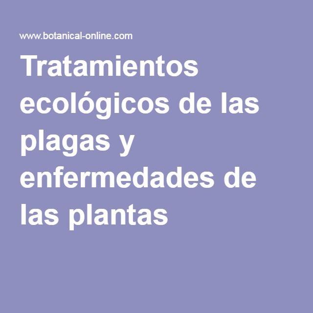 Tratamientos ecológicos de las plagas y enfermedades de las plantas