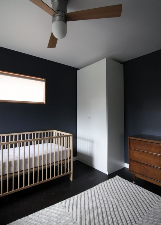 Baby Seal Black Guest Room Color House Inspiration