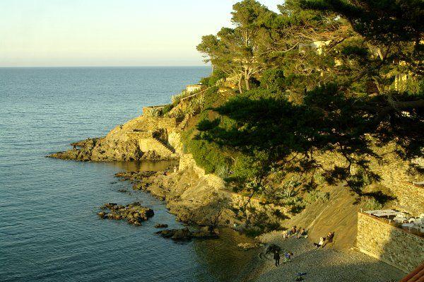 France: Languedoc-Roussillon: Pyrénées-Orientales: Collioure
