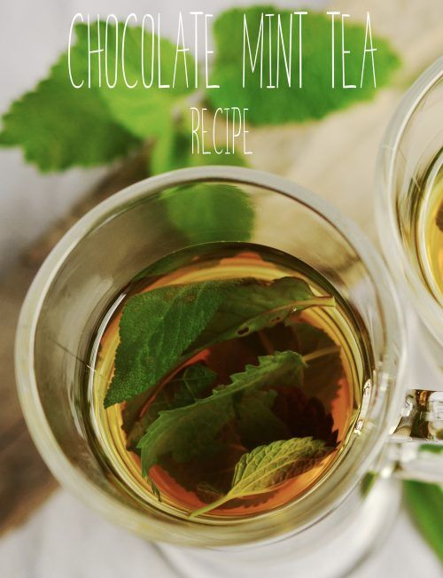 Make your own tea blend! This recipe will help you create all-natural, delicious cup of chocolate and mint tea with spices.