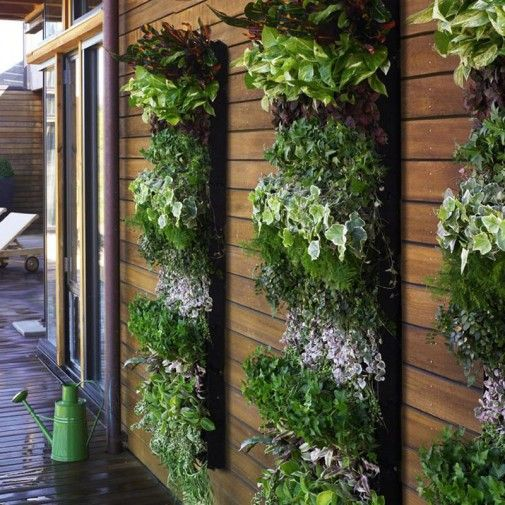 Vertical Wall Garden Design. Easy and affordable to do: cover a pallet with landscape fabric & fill with soil. Add plants and hang.