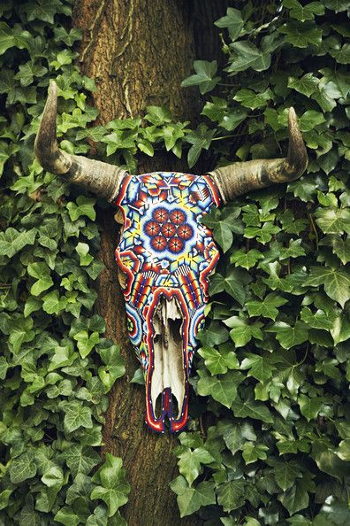 Southwest Transplant... Peeking from behind verdant ivy, a shapely cow skull gets a graphic update with ornamental beading...