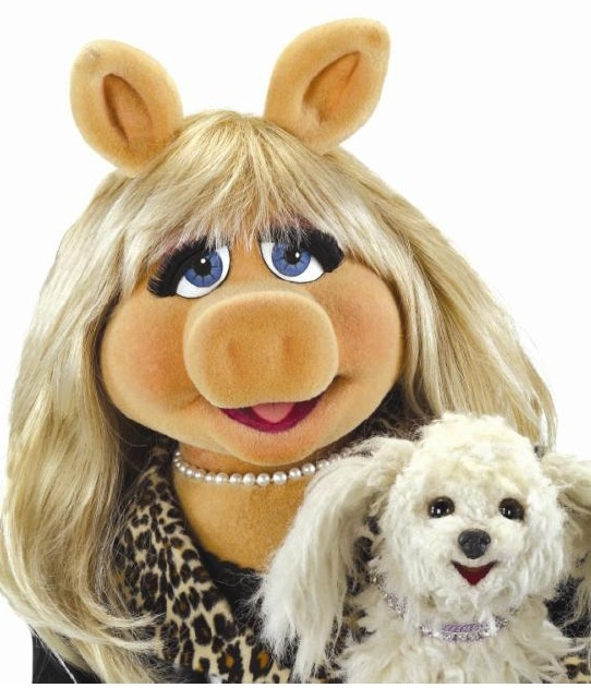 Quotes On The Muppets As Adult Oriented Characters: 175 Best Diva Aka Miss Piggy Images On Pinterest