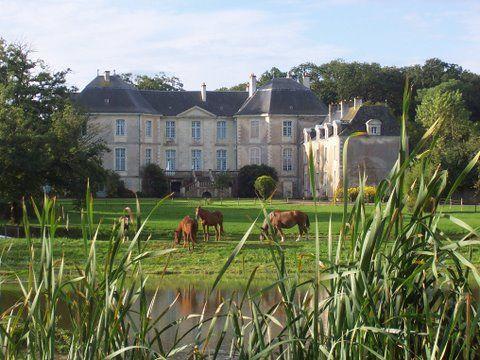 Chateau de la Rousseliere - Pays de la Loire - horses in front...