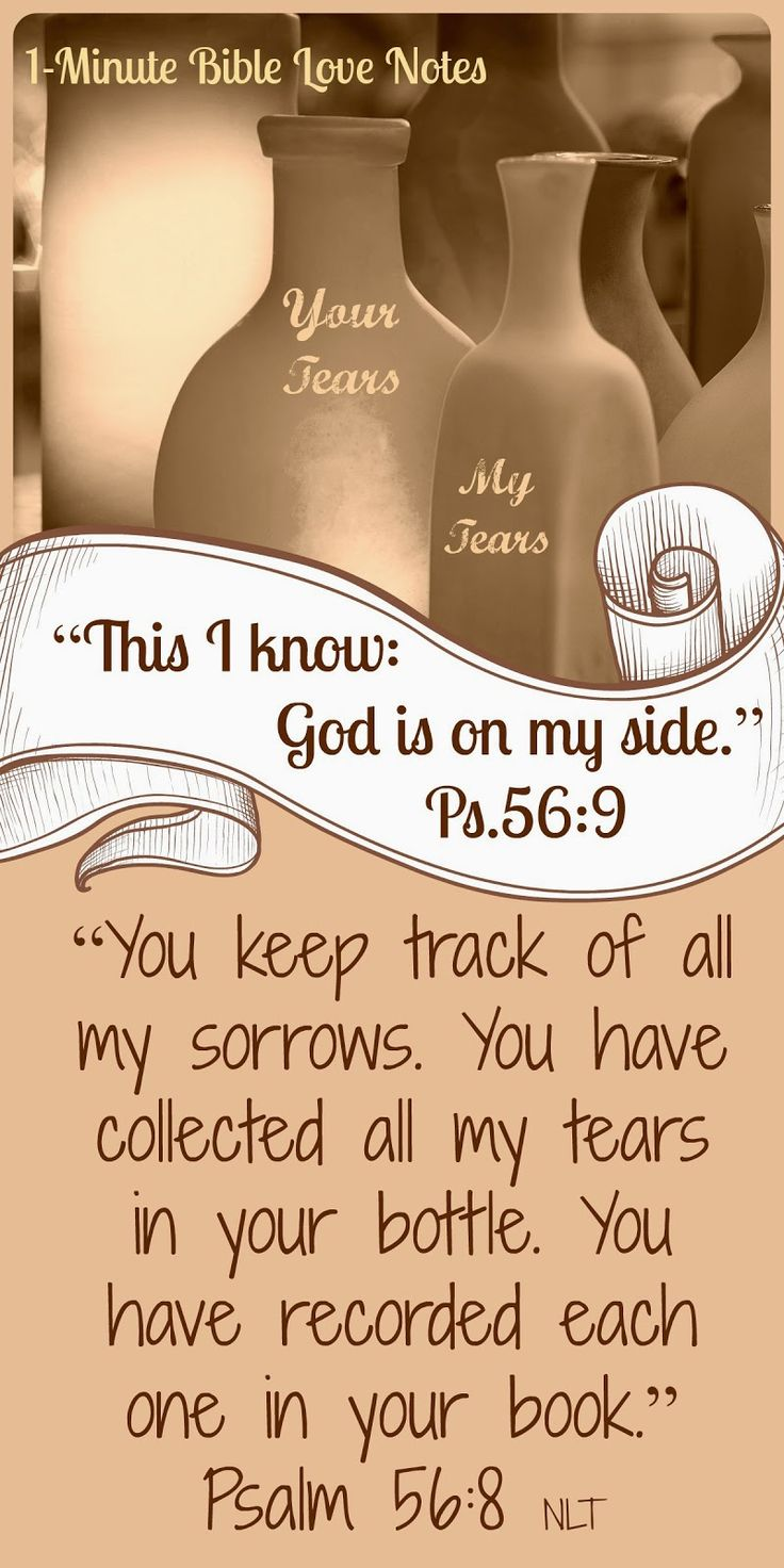 Can you fully understand the truth of this Scripture passage. God cares deeply for every sorrow we suffer. ~ When you read the devotion, why not sign up for a free subscription to 1-Minute Bible Love Notes?