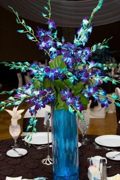 Best purple orchids ideas on pinterest orchid