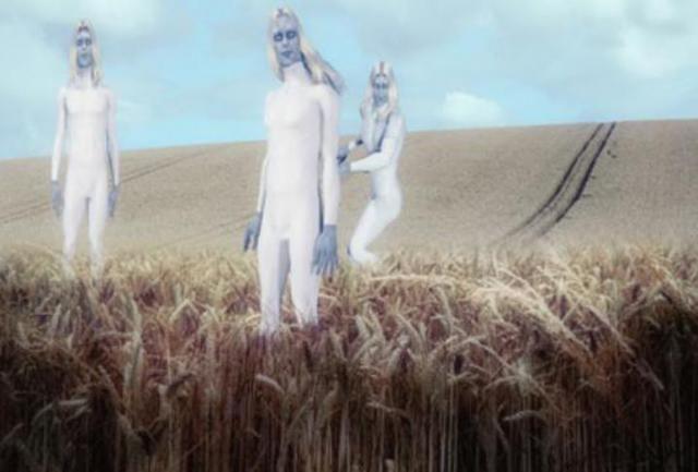 Policial britânico testemunha ETS brancos de mais de 3 metros de altura inspecionando circulo de plantação no Reino Unido ~ Sempre Questione - Notícias alternativas, ufologia, ciência e mais
