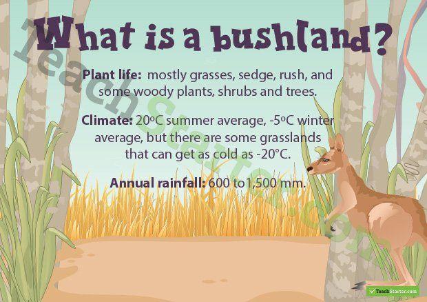 Natural environments PowerPoint presentation