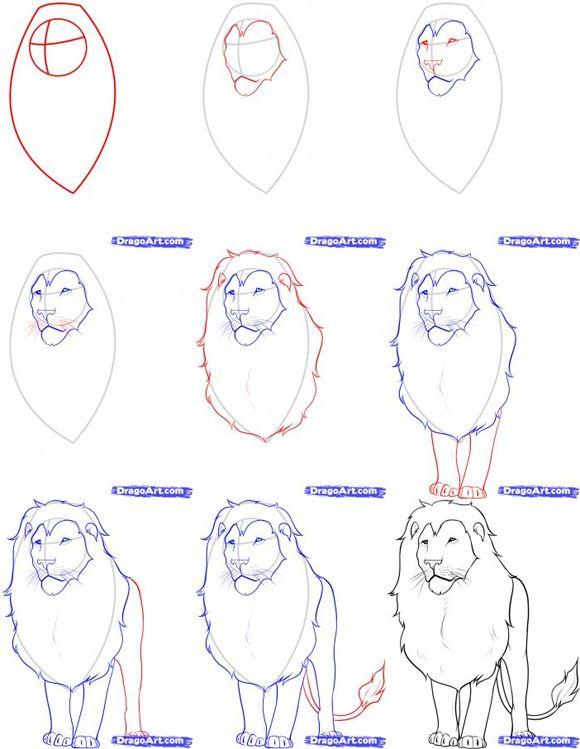 Plus de 25 id es uniques dans la cat gorie dessin lion sur - Comment dessiner un lion ...