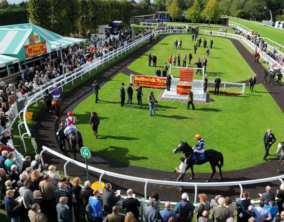 Discover details and best horse racing tips from real experts. Learn how to win with incredible info about races in Salisbury, Windsor, Yarmouth.