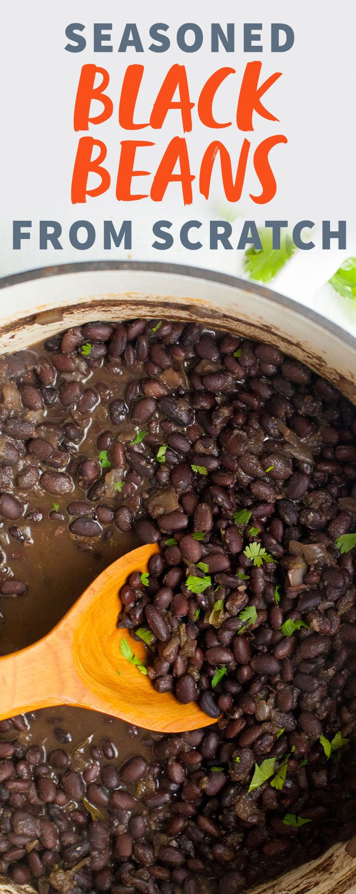 Seasoned Black Beans