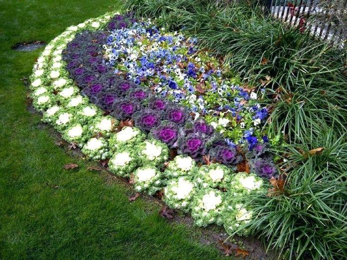 massif fleurs