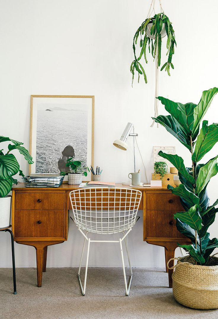 Home office with lots of plants.