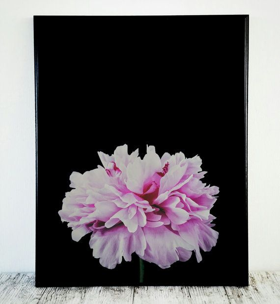Peony Printable Art Photo Peony Print Flower Print by CristylClear