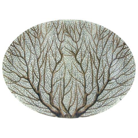 John Derian Company Inc — Large Fan Coral