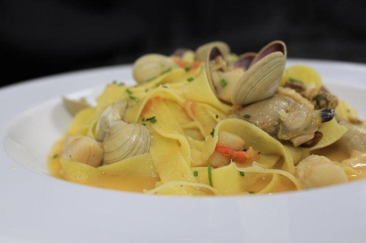 ::Fetuccini di Márola:: Fetuccini al huevo servido con camarones, ostiones, almejas, choritos y tomates cherry.