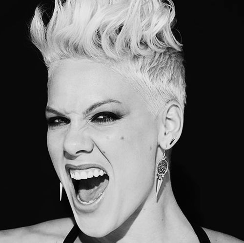 P!nk, a Type 8 on the Enneagram. | The Challenger - Type 8 ...