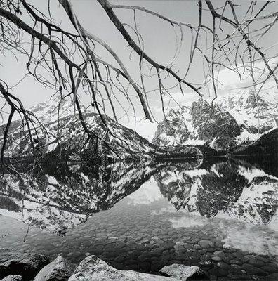 Lee Friedlander. Central reflection. Biggest print