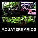 Reproducción de biotopos terrestres para anfibios y reptiles. Técnicas de naturalización de terrarios. Arcillas, materiales construcción, resinas, espumas...