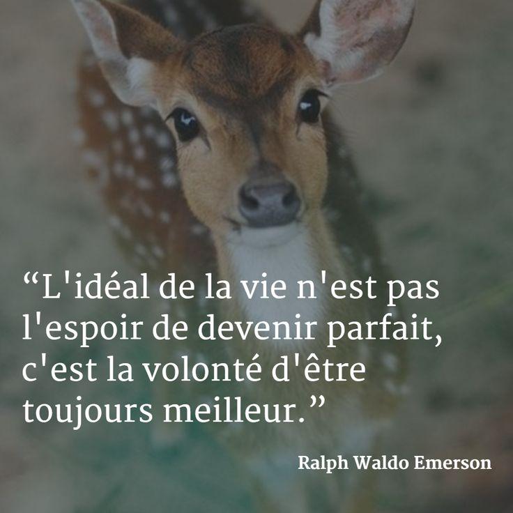 """""""L'idéal de la vie n'est pas l'espoir de devenir parfait, c'est la volonté d'être toujours meilleur."""" (Ralph Waldo Emerson) #citation #vie #volonté"""