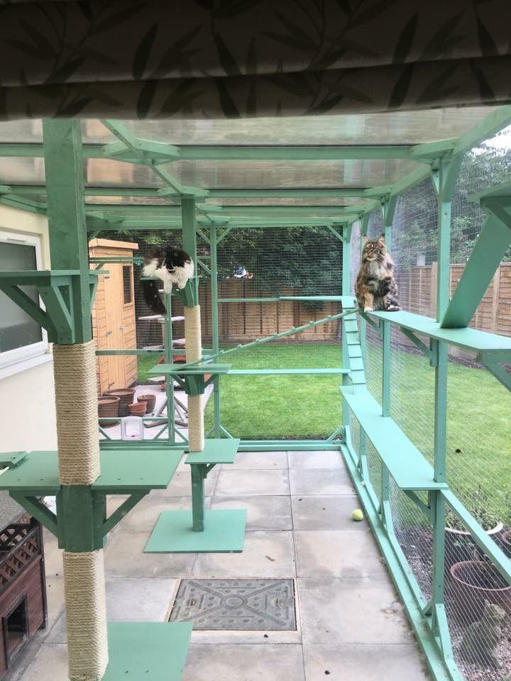 Casa Para Gatos Jardin Para Gatos Casita Para Gatos Recinto