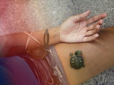 1000 images about turtle tattoos on pinterest the for Little turtle tattoo