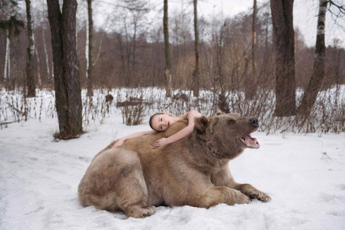 Russian Models Pose With A Real Bear For An Anti-Hunting Campaign. Olga Barantseva Photography