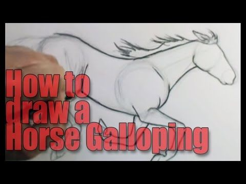 How To Draw A Horse Galloping
