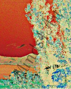 Overlooking the Bay digital art photo print