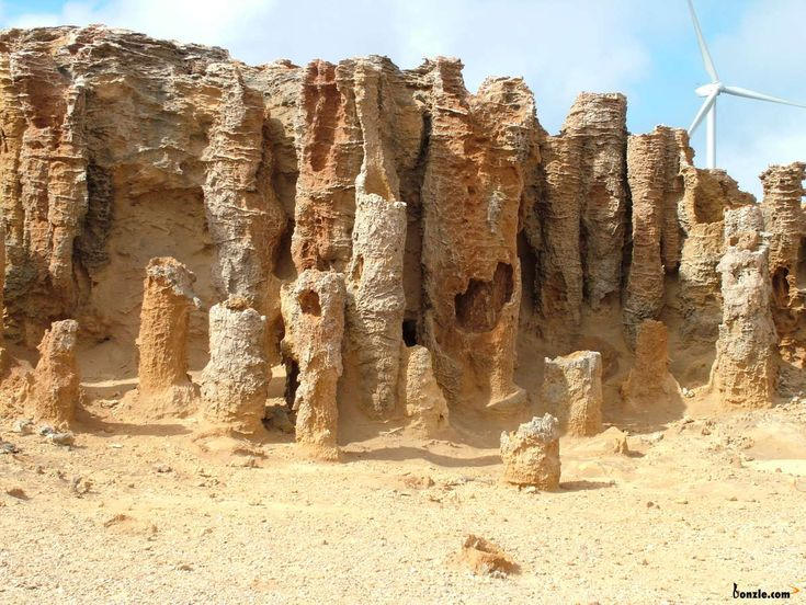 Petrified Forest, Cape Bridgewater Victoria Australia