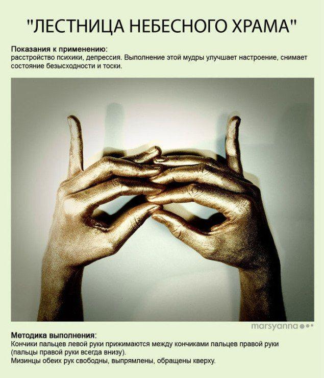Урок Йоги » Blog Archive » Мудры — йога для пальцев. Эксклюзивная иллюстрированная книга мудр.